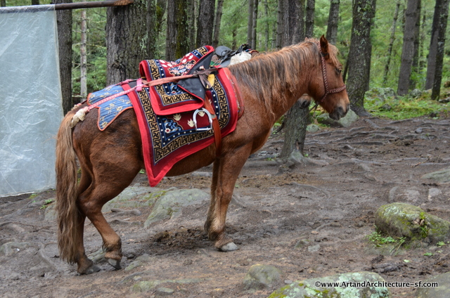 You can take horses from the parking lot to the tea house. It helps a bit I suppose, but with the mud it looked more treacherous than fun