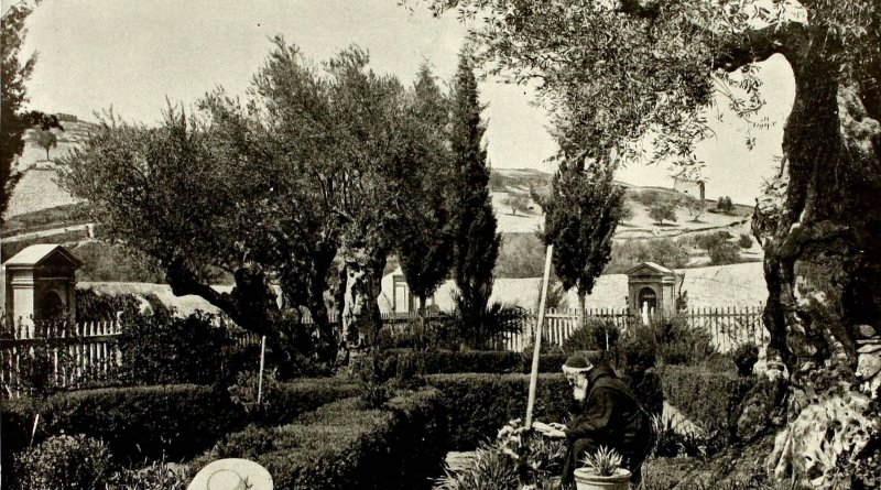 Garden of Gethsemane, Mount of Olives, Jerusalem about 1892