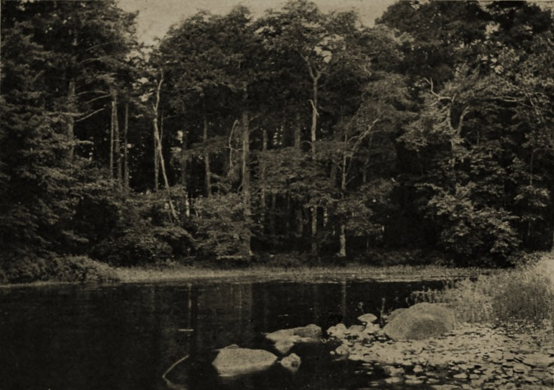A quiet cove by E. G. Dunning about 1908
