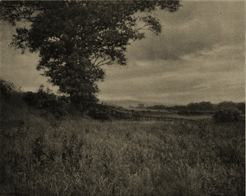 Afternoon by John M. Whitehead about 1908