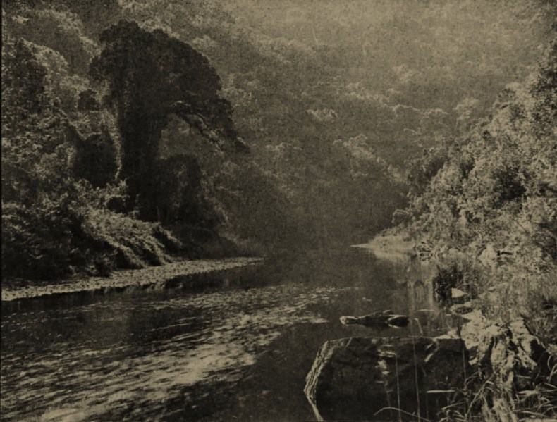 In the wilderness (Cape Colony) by Arthur Elliott about 1908