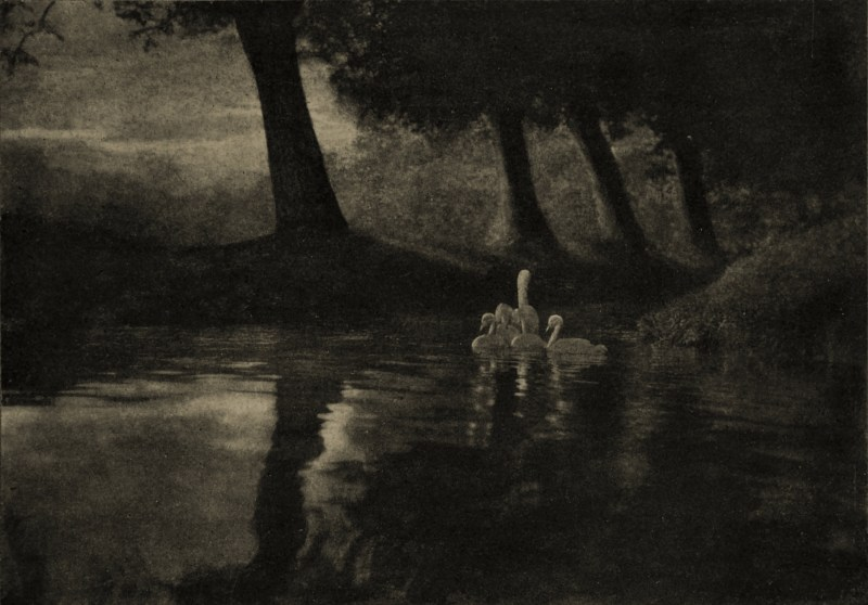 Pastoral by Keith Dannatt about 1908