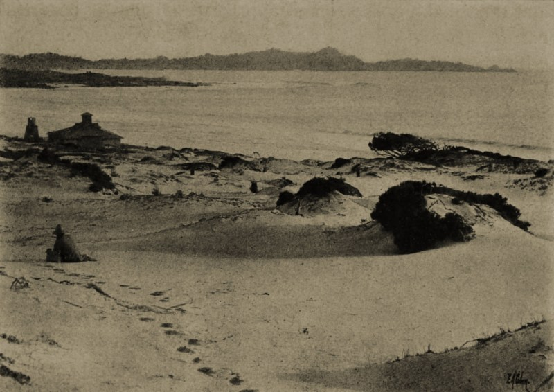 Carmel: the dunes by Edgar A. Cohen about 1908