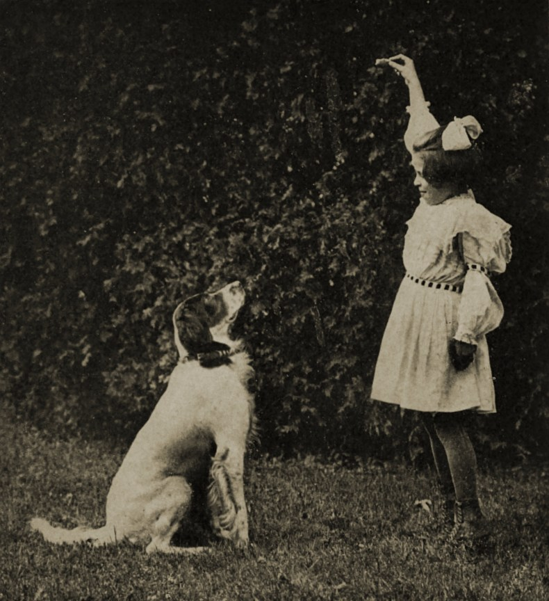 Take it ! by Jere Montague about 1908