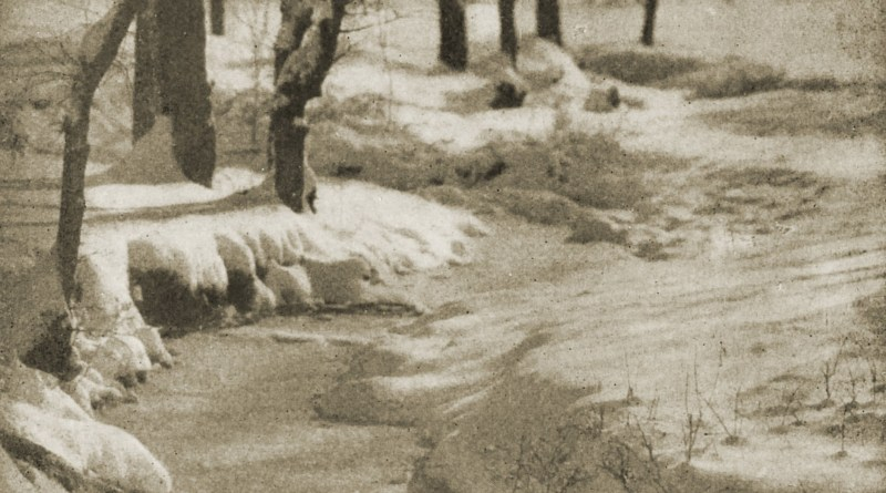 Winter by Theo Eitel about 1908