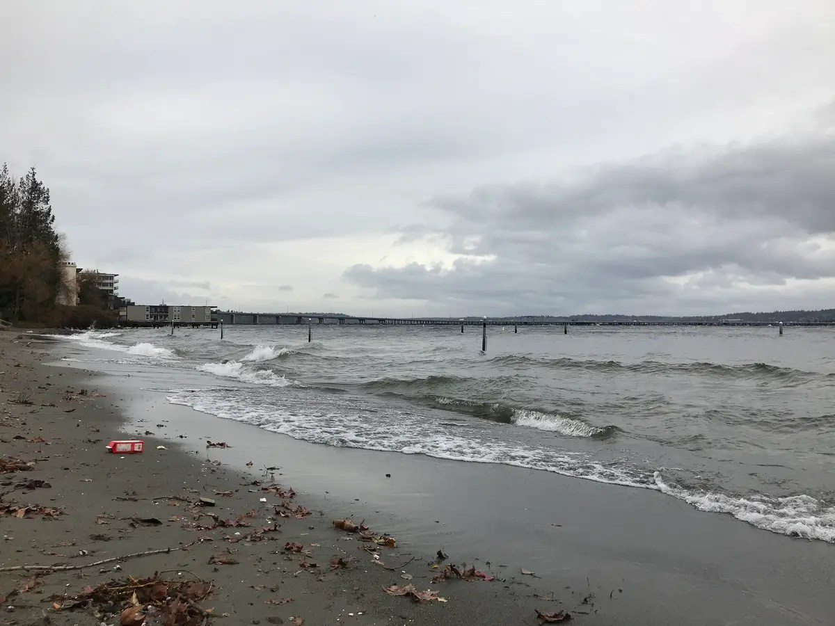 Camano Island State Park Weather Windstorm Leaves 150 000 Without Power Widespread Damage