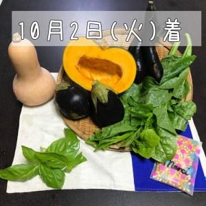 10月旬彩野菜バスケット