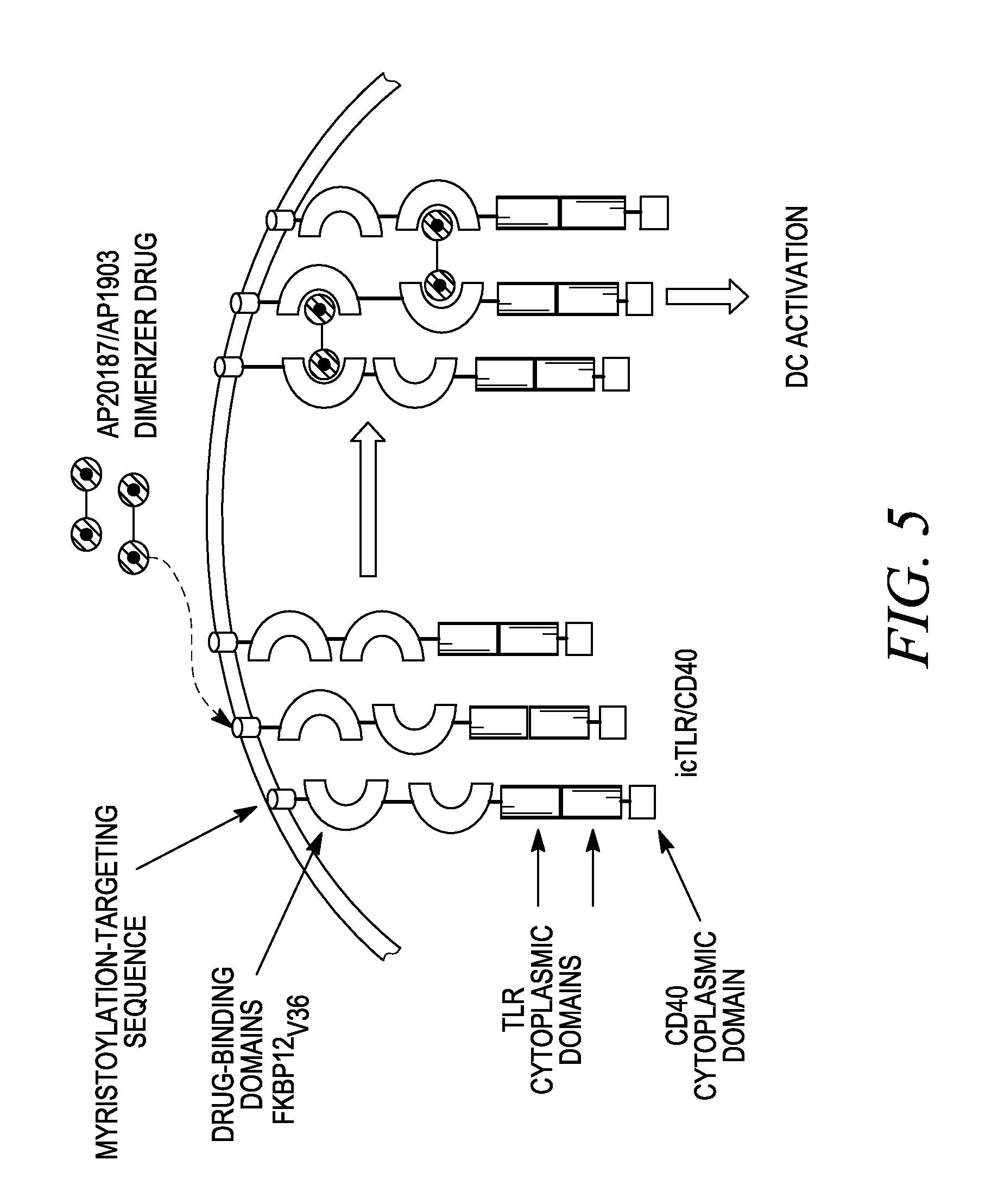 lexus ls400 fuse box diagram on 2007 toyota yaris fuse box diagram