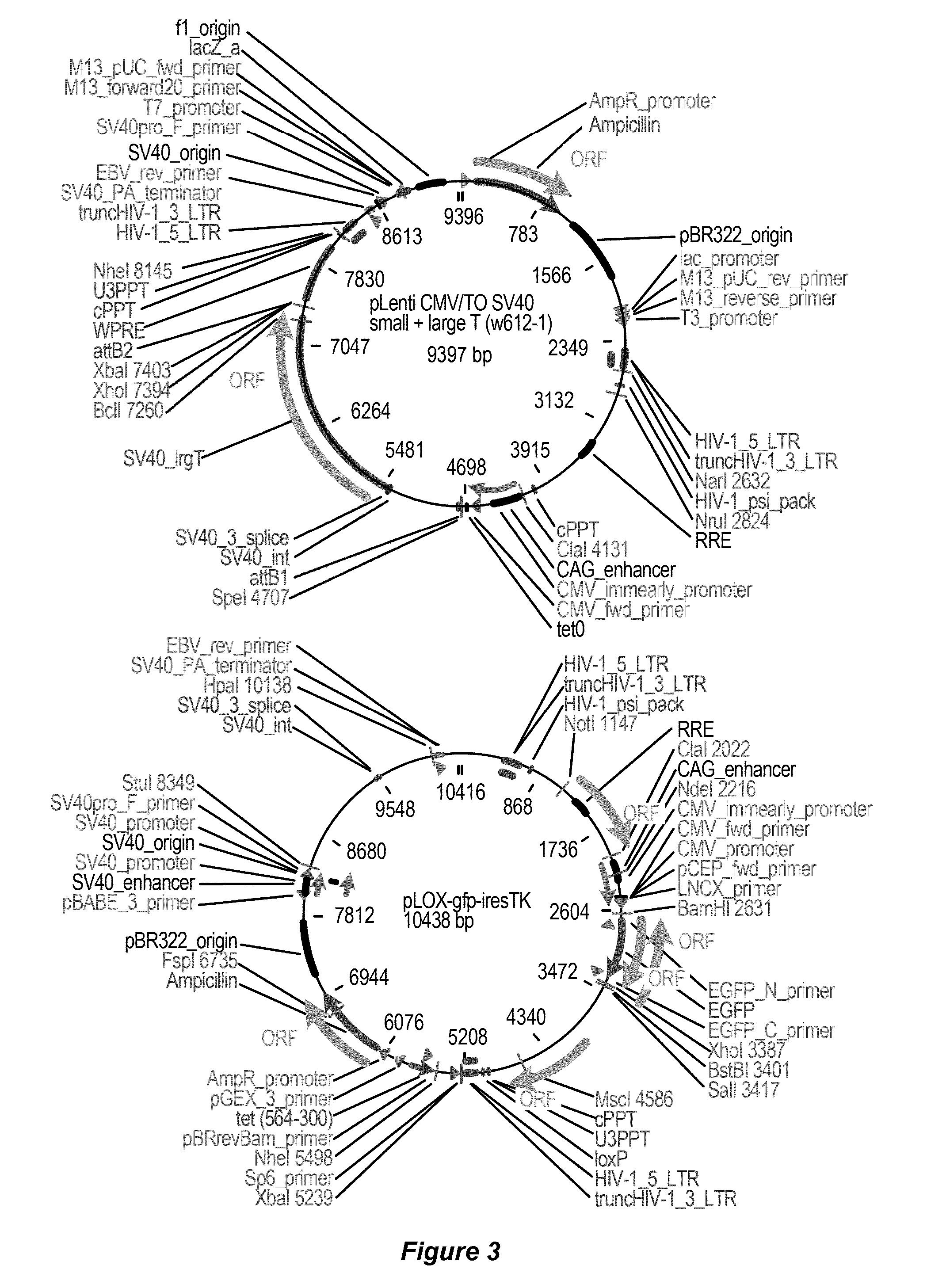 3000gt mitsubishi 1996wiring diagram