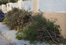 Restos de poda en una calle de la Canyada