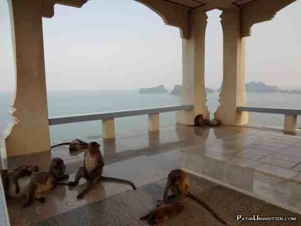 Lazy monkeys chilling out on the terrace of a mountain-top temple in Prachuap Khiri Khan, Thailand.