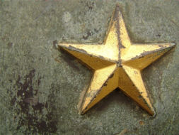 Gold Star (Military)
