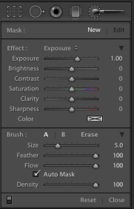 Adobe Lightroom 4 2010 Adjustment Brush Panel