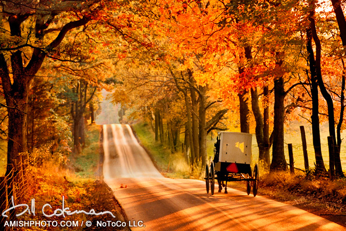 Vermont Fall Foliage Wallpaper Photography The Man Who Loved Autumn And Children Paul