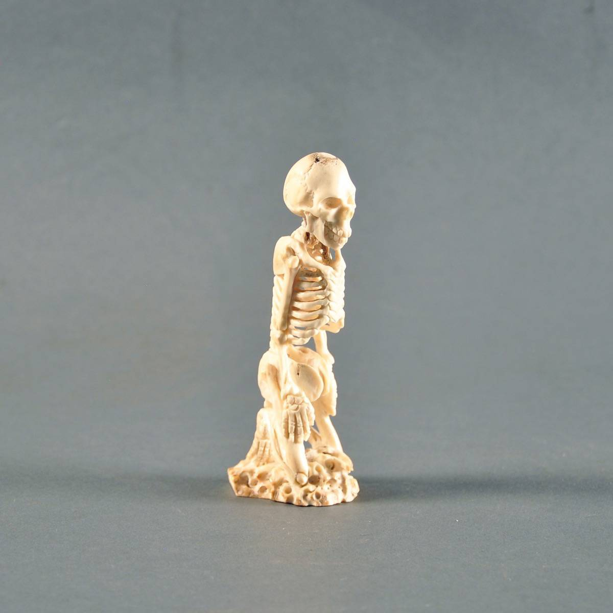 Asian Tapestry Carved Ivory Human Skeleton | De Grande Antique Curiosities