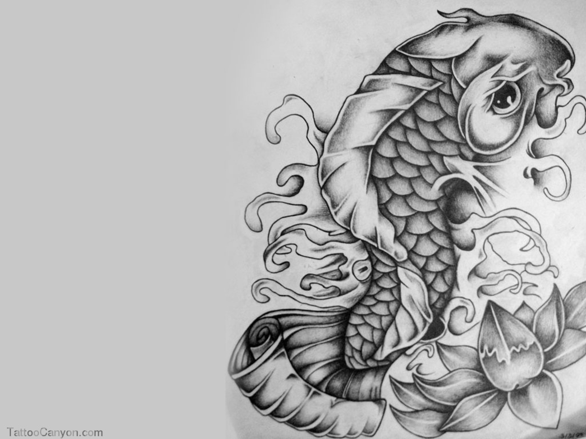 Koi Fish 3d Wallpaper Free Download Tattoo Art Wallpapers 55 Background Pictures