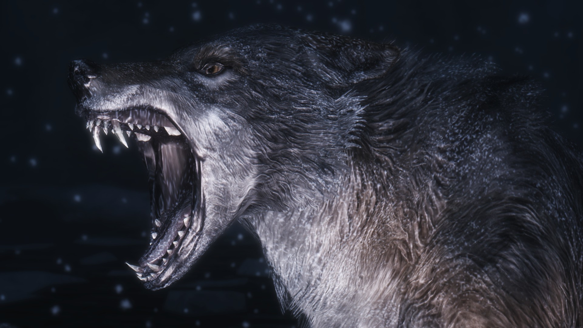 Black Wolf Wallpaper Wolf Wallpapers 1920x1080 79 Background Pictures