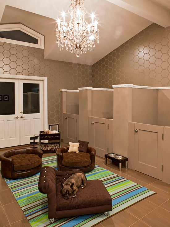 PETS AT HOME DESIGNING DOG ROOMS Pawsh Magazine - dog bedroom ideas