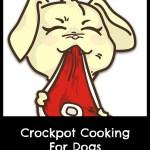 Homemade Dog Food In a Crockpot