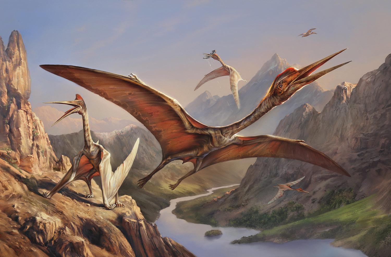 Free Fall Animal Wallpaper Quetzalcoatlus The Art Of Eldar Zakirov