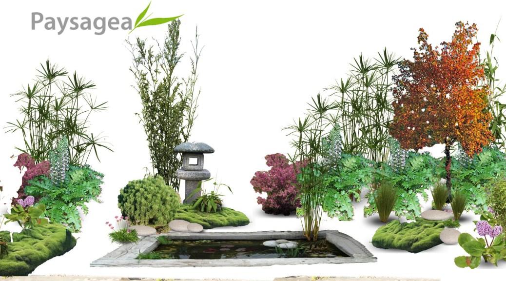 bassin japonais par paysagiste