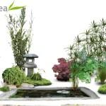 Etude de l'intégration d'un bassin Japonais (Var)