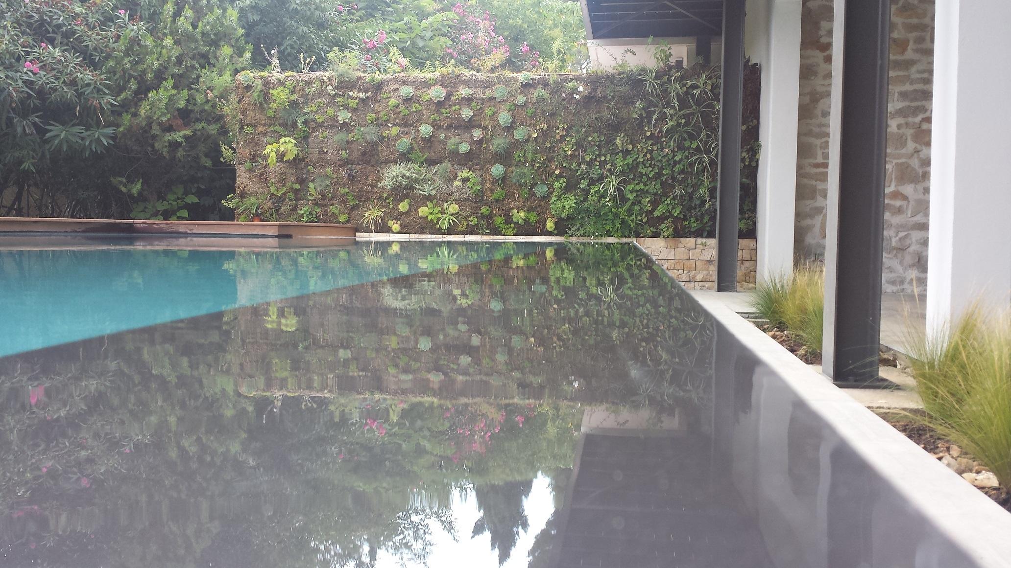 Fr d ric morisset votre paysagiste conseil cr ation for Amenagement abord piscine