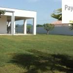 Aménagement d'un jardin zen méditerranéen