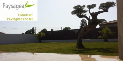 aménagement paysager jardin zen