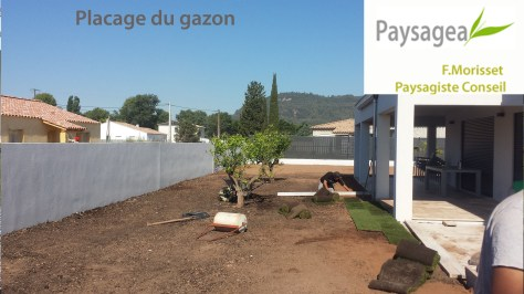 placage gazon jardin zen