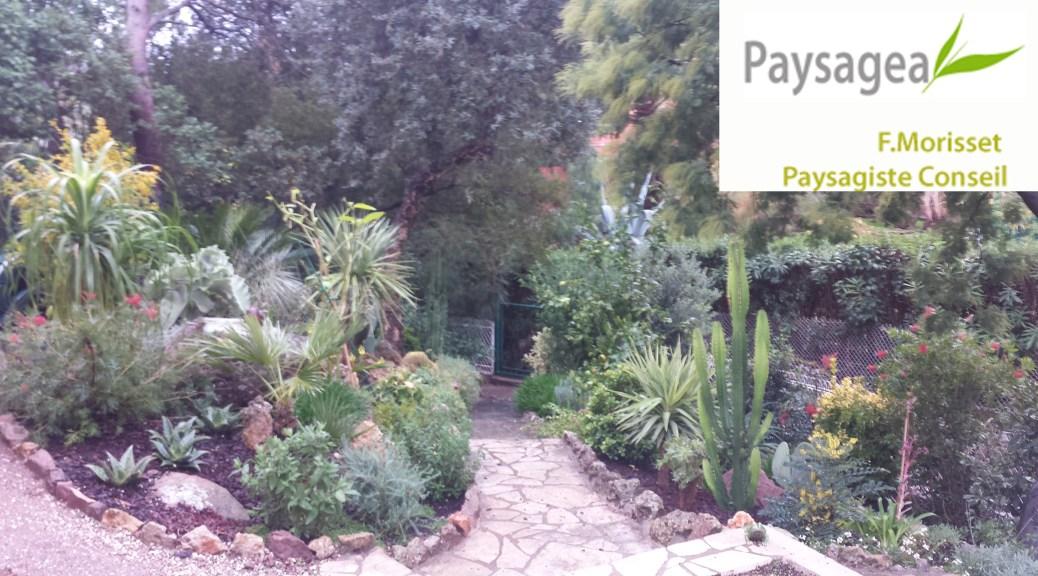 amenagement-jardin-exotique-var