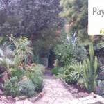 Aménagement d'un jardin exotique