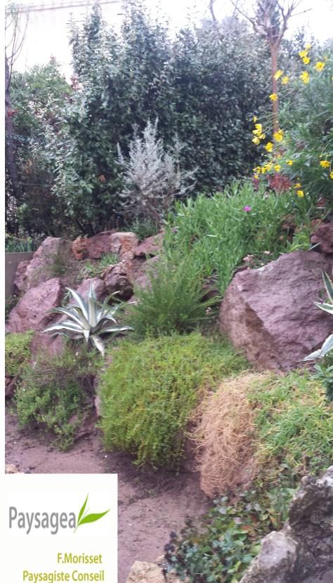 jardin-exotique-copie