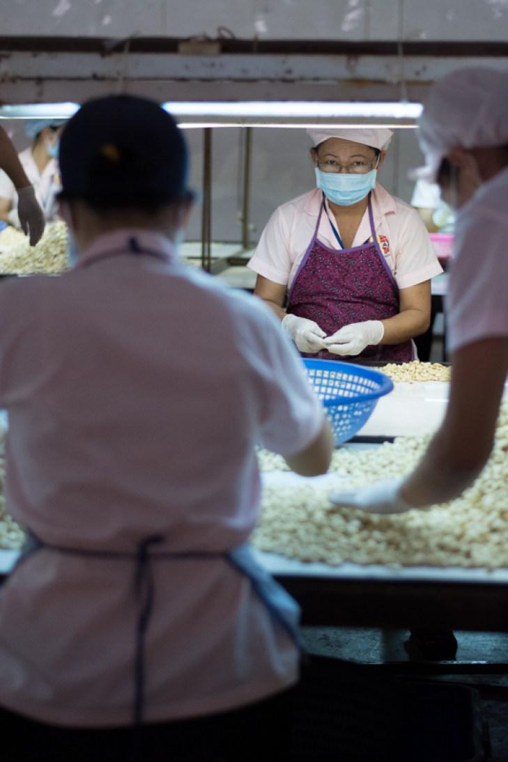 Grattage des noix -http://paysansdavenir.com/plongee-au-coeur-de-la-filiere-noix-de-cajou-de-binh-phuoc-vietnam/