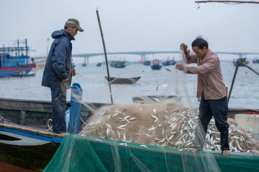 Arrivée des pêcheurs à l'aube - Hoi An