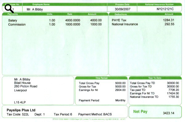 Plus Green Payslips - Payslips Plus - Payroll Payslip Template