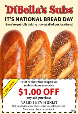 Small Of National Sub Day