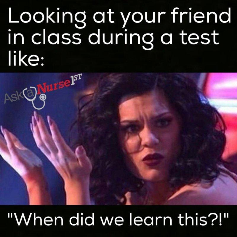 Fullsize Of Nursing School Meme Large Of Nursing School Meme