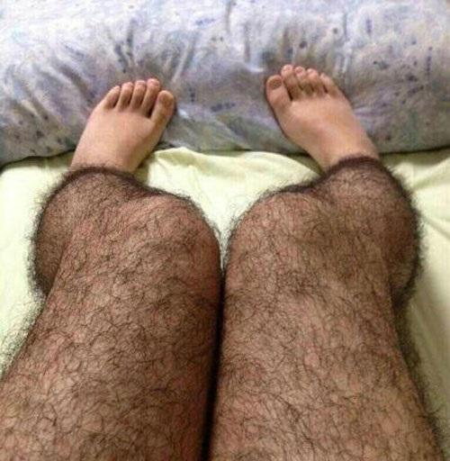 Hairy Legged Tights