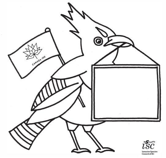 56 T Bird Wiring - Wiring Diagram Online