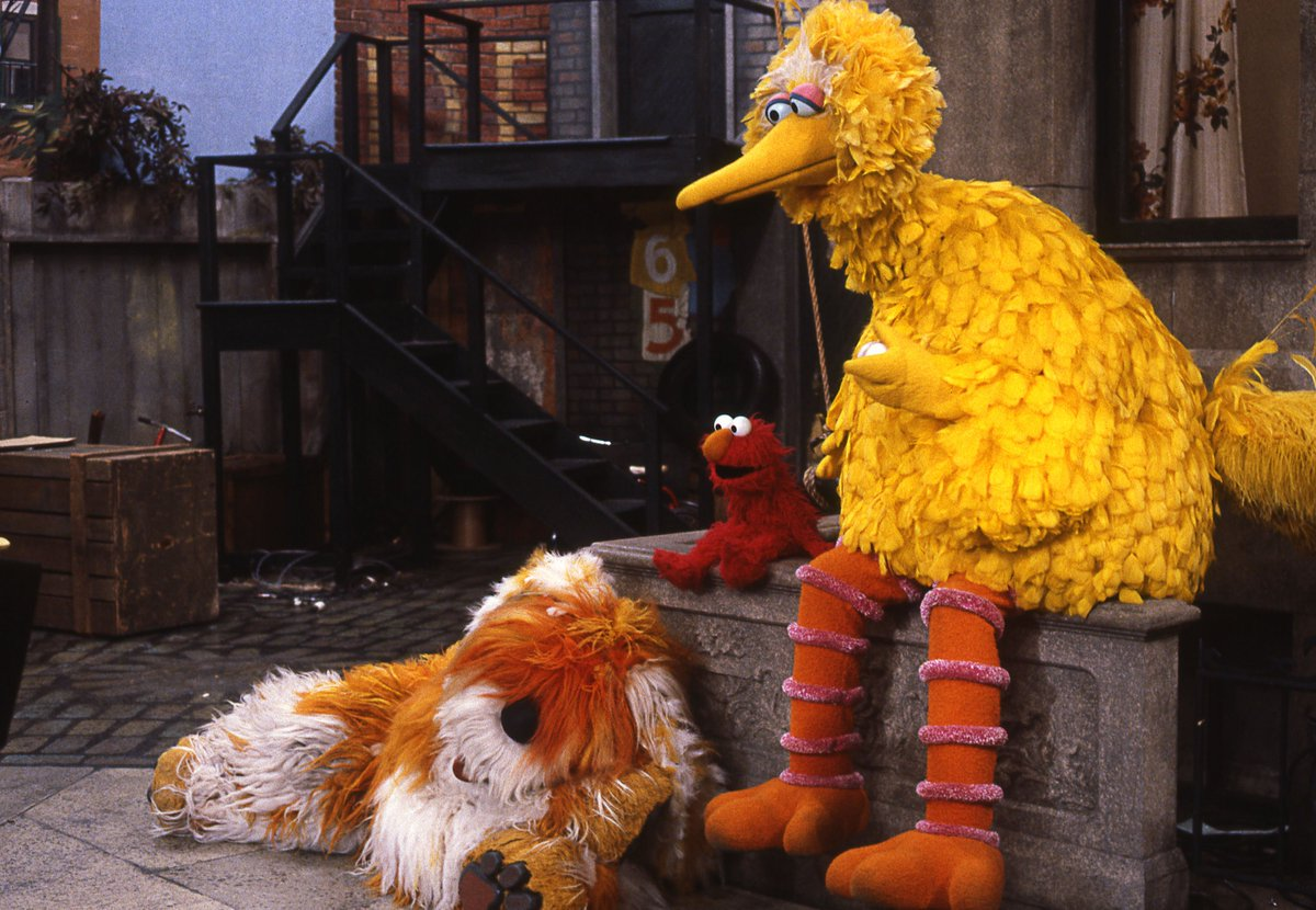 Endearing Big Bird On Is My Dog His Name Is Barkley Sesame Street Barkley Sesame Street Breed His Name Is Ithink Too Young To Remember Him As A Big Bird On Is My Dog bark post Barkley Sesame Street