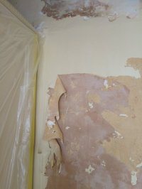 Painting Over Asbestos Artex Ceiling | Integralbook.com