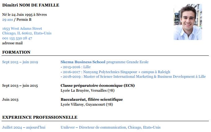 exemple de cv projectif