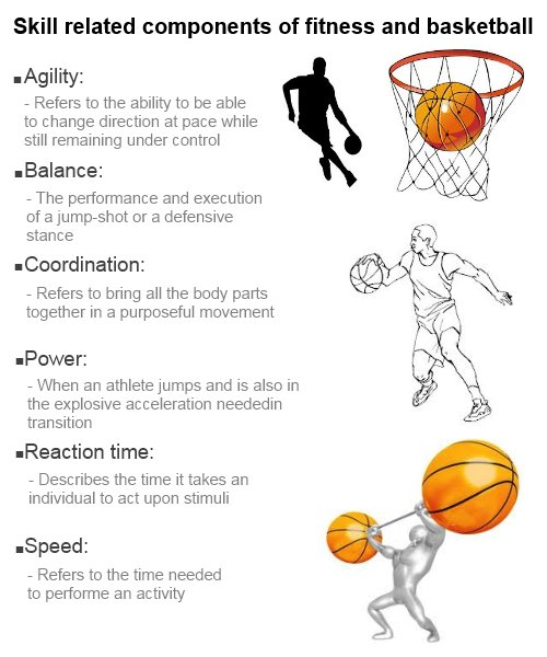 Basketball Coach™ on Twitter \ - components of fitness