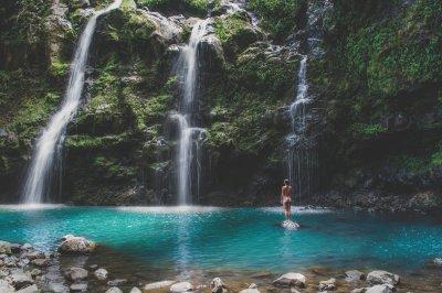 Maui Lifestyle News