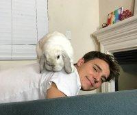 Bailey The Bunny (@BaileyTheBunnyy) | Twitter
