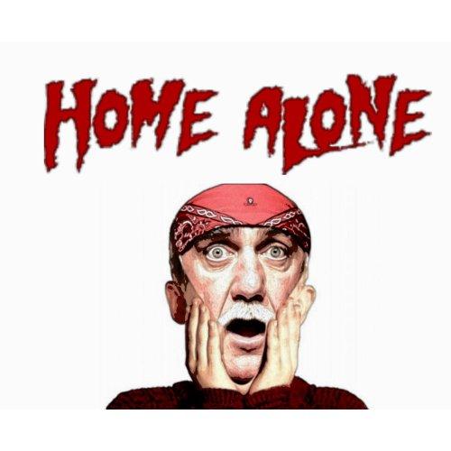 Medium Crop Of Movies Like Home Alone