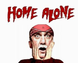 Small Of Movies Like Home Alone