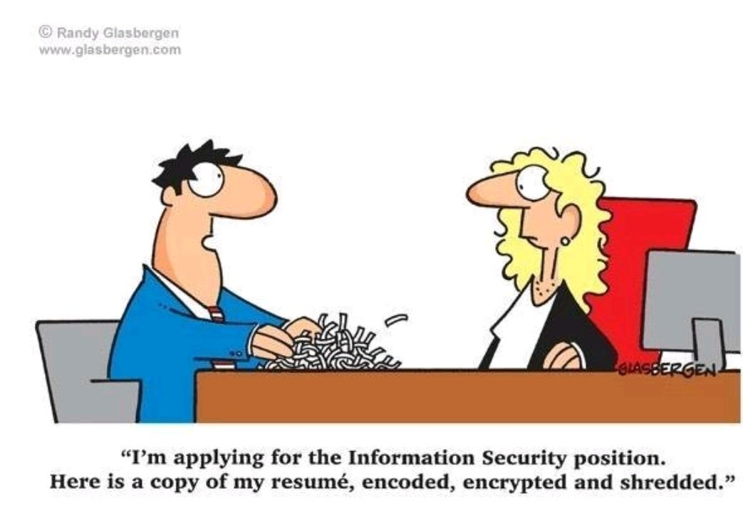 cv data protection officer