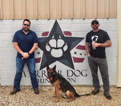 Medium Of Warrior Dog Foundation